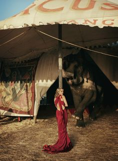 Circus Tent Inspiration Reese Witherspoon and an elephant