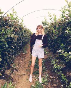 Acacia Brinley's Burgundy Sweater
