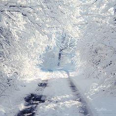 White Way. by *andokadesbois