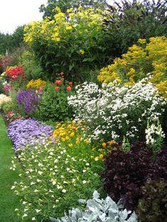 blühende blumenbeete-garten landschaft farben planung anbau von pflanzen