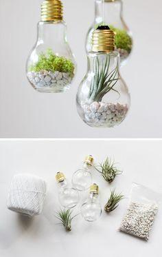 DIY Lightbulb Terrariums | Click Pic for 30 DIY Home Decor Ideas on a Budget | DIY Home Decorating on a Budget