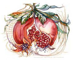 Pomegranate Art Print by Irina Vinnik - X-Small Art And Illustration, Illustrations And Posters, Pomegranate Art, Pomegranate Tattoo, Pick Art, 4 Wallpaper, Grenade, Encaustic Art, Watercolor Art