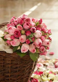 Send Flowers for Girlfriend Online Beautiful Roses, Beautiful World, My Flower, Flower Power, Flowers For Girlfriend, Bouquet, Send Flowers, Morning Greeting, Rose Cottage