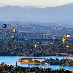 We loved seeing photos of the Canberra Balloon Spectacular from our passionate fans, like this one by @louie_abroad #visitcanberra