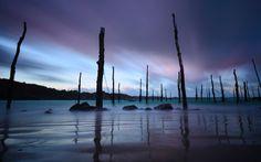 Gwin-Zegal, port à poteaux des Côtes d'Armor #gwinzegal #plouha  #cotesdarmor #bretagne #brittany #fionaphotobreizh