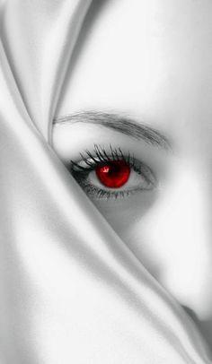 Galeria de fotos para tu blog o webpage: Black and White Photo With Color Red
