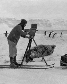 Frank Hurley, photographer and adventurer, on skis...