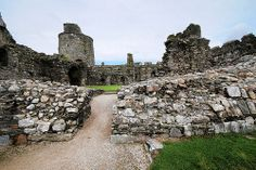 Kidwelly Castle (kdw09038) by Marechal Jacques