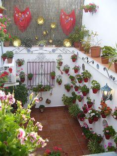 patio in Málaga Andalucía