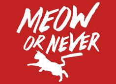 Meow Or Never T-Shirt | SnorgTees