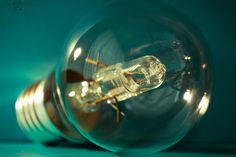 No.44 - Lightbulb by Neil Hamilton on 500px