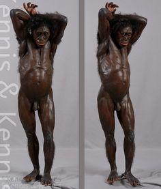Australopithecus sediba - MH1 - reconstruction by Kennis & Kennis