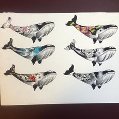 5/6 available. Come have a whale of a time with meee ! #flash #flashset…