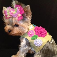 Vienna Couture Canine, Dog Apparel, Haute Couture