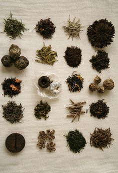 tea in a variety of forms ... loose leaf, blooming, pearl, cake ...