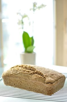 No knead whole wheat bread (4 ingredients only)