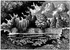 Christopher Wormell (British, b. 1955). The Frog Pond. (wood engraving)