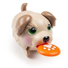 Wonderful Chubbie Chubby Adorable Dog - 8f23bb21d216b21b3577f7b82fba87a7--chubby-puppies-adorable-puppies  HD_782559  .jpg