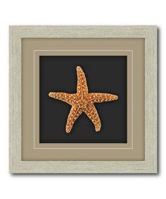 Look at this #zulilyfind! Sugar Starfish Shadow Box by COURTSIDE MARKET #zulilyfinds