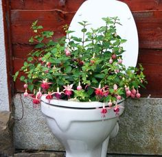 recycled  toilet-- i am all for recycling, but why would i want this in public?!?