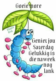Good Morning Wishes, Day Wishes, Lekker Dag, Afrikaanse Quotes, Goeie Nag, Goeie More, Special Quotes, Happy Saturday, Videos Funny