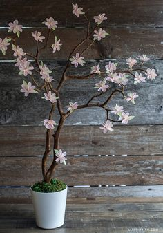 Crepe Paper Cherry Blossoms Arrangement..free tutorial for making!!