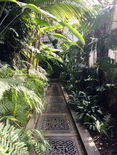 Railroad Tracks, Baby Shower, Earth, Madrid, Nature, Shapes, Gardens, Babyshower, Naturaleza