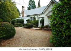 Image result for hedges on gravel driveway