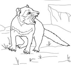 Tasmanian Devil Growling coloring page from Tasmanian devil category. Select from 20946 printable crafts of cartoons, nature, animals, Bible and many more.