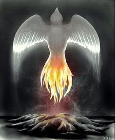Conspiracy Feeds: Το Μυθικό Πουλί Φοίνικας και η Επιστροφή των Θεών