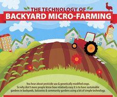 Graphic: 'The Technology of Backyard Micro-Farming' — City Farmer News