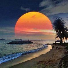 Ingesloten afbeelding Singapore, Cover Photos, Earth, Sunset, Adventure, Facebook, Instagram Posts, Travel, Outdoor