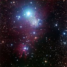 The Cone nebula Photographed by Mr. Richard Steinberg of the Delaware Valley Amateur Astronomers of the Philadelphia, PA area