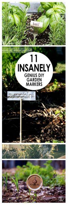 DIy Garden Marker, DIY Garden Markings, Easy Garden Markers, Quick Garden Markers, Gardening Markers, How to Make Garden Markers, Popular Pin, DIY Garden, Gardening Projects, Quick Gardening Projects.