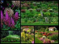 More views of this lovely garden.  I SO wish I had a green thumb like this!