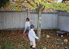 fall planting for kids - - Yahoo Image Search Results