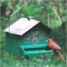 Wild Bird Feeders Walmart | Bird Cages