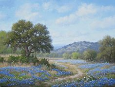Bluebonnet Trail by Sally Minter