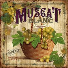 muscat blanc-vintage ads © bruno pozzo 2016