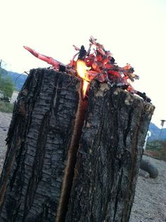 How To Make Swedish Fire Torch-Give This A Try, You'll be Amazed At How Well It Works. #camping #survival skills http://www.thegoodsurvivalist.com/how-to-make-swedish-fire-torch-give-this-a-try-youll-be-amazed-at-how-well-it-works/