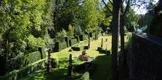 Der auf einer künstlichen Terrasse angelegte Barockgarten der Gamburg mit seinem Nymphenbrunnen, seinem stimmungsvollen Lichtkonzept und seinen botanischen Raritäten ist als Teil einer Burganlage, und somit als Burgpark, besonders außergewöhnlich. Seit den letzten Jahrzehnten wird er nach alten Vorlagen wiederbelebt und weiterentwickelt. #gamburg #burg #castle #park #taubertal #tauberfranken #franken #mittelalter #wanderlust #deutschland #germany #romantische #straße #romantic #road…