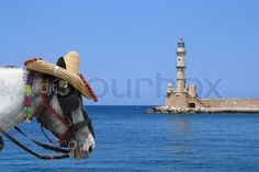 Leuchtturm in Chania, Kreta Camel, Animals, Lighthouse Pictures, Photomontage, Spain, Animais, Animales, Animaux, Camels