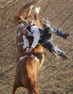 A graceful dismount at the Caldwell Night Rodeo, 2013.  What do you think?  A 10?