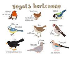 http://www.buitendelijntjesshop.com/c-1841513/made-by-sterre/