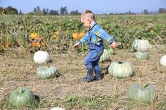 Fall fun for toddlers near Seattle