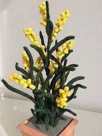 Mimosa Nota sopratutto come fiore reciso dal caratteristico e intenso profumo è ormai da tempo il simbolo della Festa della Donna . La Mimosa è...