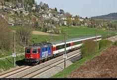421 383 SBB Re 421 at Thayngen, Switzerland by Richard Behrbohm Laneya Grace, Swiss Railways, Europe, Travel, Transportation, Viajes, Trips, Traveling, Tourism