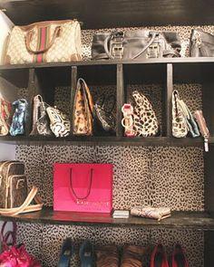 leopard wallpaper for the closet