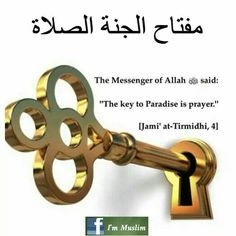 Love In Islam, Allah Love, Quran Quotes, Islamic Quotes, Saw Quotes, Noble Quran, Life Cover, The Messenger, Islam Religion