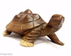 Tiny Turtle hand carved avocado pit pendant by UtilitarianMom